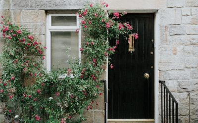 The Spring Market is in Bloom. Is it Time to Enter the Market?